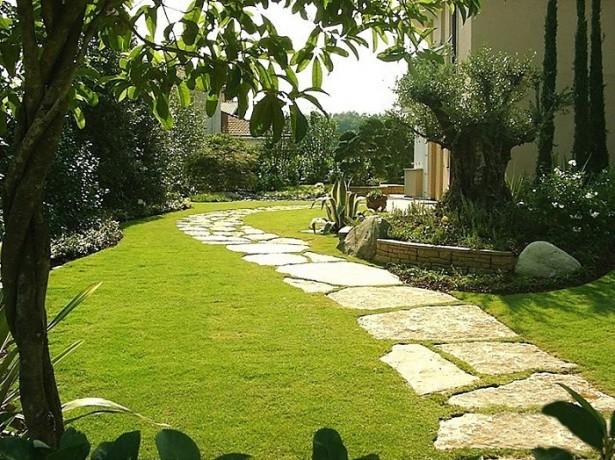 Когда лучше сажать и сеять газонную траву