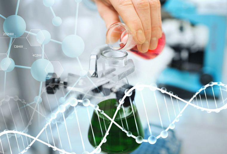 Правда ли, что ученым удалось найти эффективное лекарство от рака?